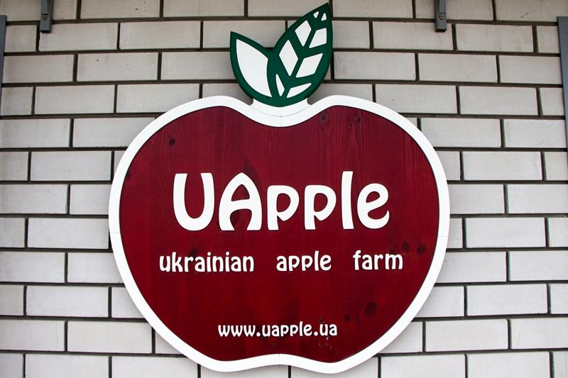экспортер украинских яблок